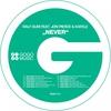 Couverture de l'album Never (feat. Jon Pierce & Kafele) [Remixes]