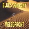 Couverture de l'album Melegfront