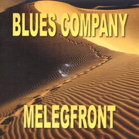 Cover of the track Melegfront