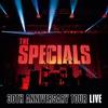 Couverture de l'album The Specials: 30th Anniversary Tour (Live)