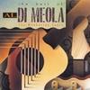 Couverture de l'album The Best of Al Di Meola: The Manhattan Years