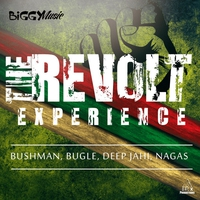 Cover of the track The Revolt Experience