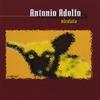 Cover of the album Viralata