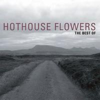 Couverture du titre The Best of Hothouse Flowers
