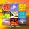 Couverture de l'album Nature's Symphony