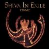 Cover of the album Ethnic