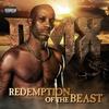 Couverture de l'album Redemption of The Beast