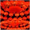 Couverture de l'album JùJù - EP