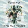 Cover of the album Samsara
