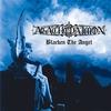 Couverture de l'album Blacken the Angel