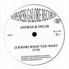 Couverture de l'album (I Know) What You Want - EP