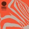 Couverture de l'album Hypnotic Covers - EP
