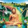 Cover of the album Buddha-Bar XVI
