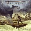 Couverture de l'album In the Storm