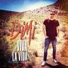 Couverture du titre Viva La Vida (Radiomix)