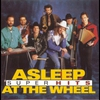 Couverture de l'album Super Hits: Asleep At the Wheel