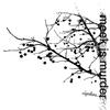 Cover of the album Algorithms