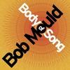 Couverture de l'album Body of Song
