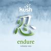 Couverture de l'album Endure Vol.1