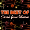 Cover of the album The Best of Sarah Jane Morris (Live)