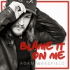 Couverture de l'album Blame It on Me - Single