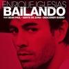 Cover of the track Bailando
