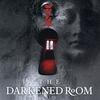 Couverture de l'album The Darkened Room