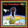 Couverture de l'album Cry Freedom Dub