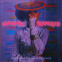 Couverture du titre Manara Remixed