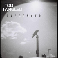 Cover of the track Passenger - Single