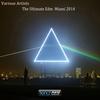 Couverture de l'album The Ultimate EDM Miami 2014
