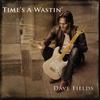 Couverture de l'album Time's A Wastin'