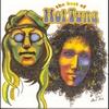 Couverture de l'album The Best of Hot Tuna