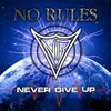 Couverture de l'album Never Give Up