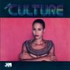 Couverture de l'album More Culture