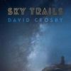 Couverture de l'album Sky Trails