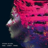 Couverture de l'album Hand Cannot Erase (Deluxe Edition)