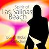 Couverture de l'album Spirit of las Salinas Beach Vol.2 (Ibiza Chill Out Collection)