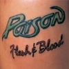 Couverture de l'album Flesh & Blood