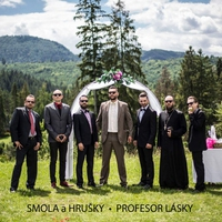 Cover of the track Profesor Lásky - Single