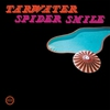 Cover of the album Spider Smile