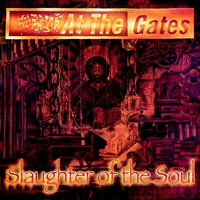 Cover of the track Slaughter of the Soul (Expanded Edition)