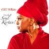 Couverture de l'album This Is Soul Kirtan!