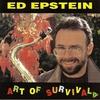 Couverture de l'album The Art of Survival