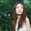 Couverture de l'album karin