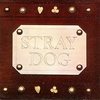 Cover of the album Stray Dog
