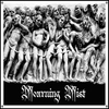 Cover of the album Mourning Mist