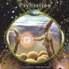 Cover of the album Psybration - Fundamental Progression