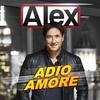 Couverture de l'album Adio Amore (Golddiggers Remix) - Single