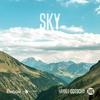 Couverture de l'album Sky - Single